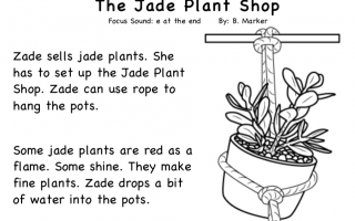 Silent e Stories- The Jade Plant (FREE)